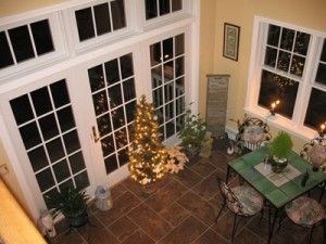 Tree in the Sunroom